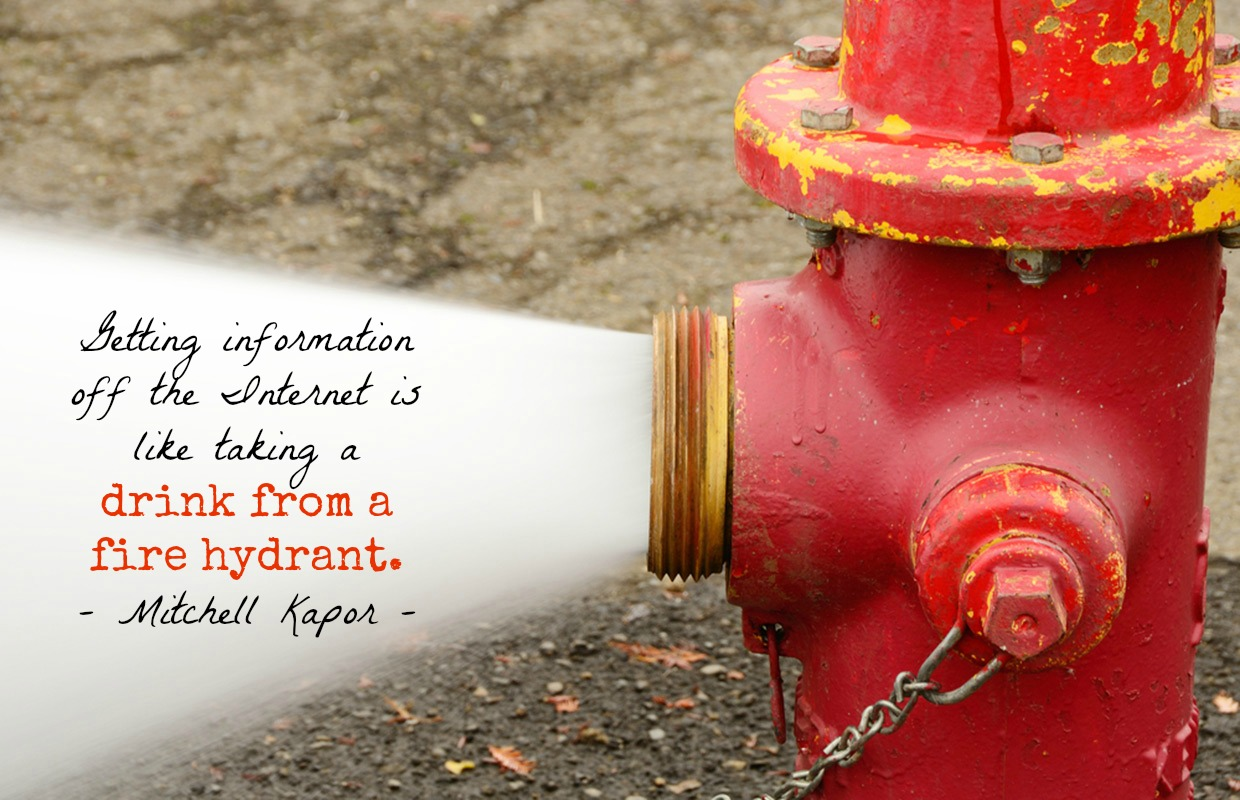 Getting information off the Internet is like taking a drink from a fire hydrant. - Mitchell Kapor